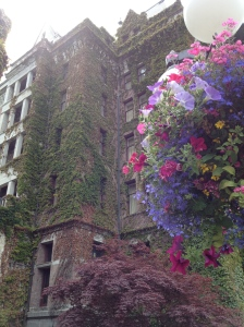 The ivy covered walls of the Empress. Fancy...