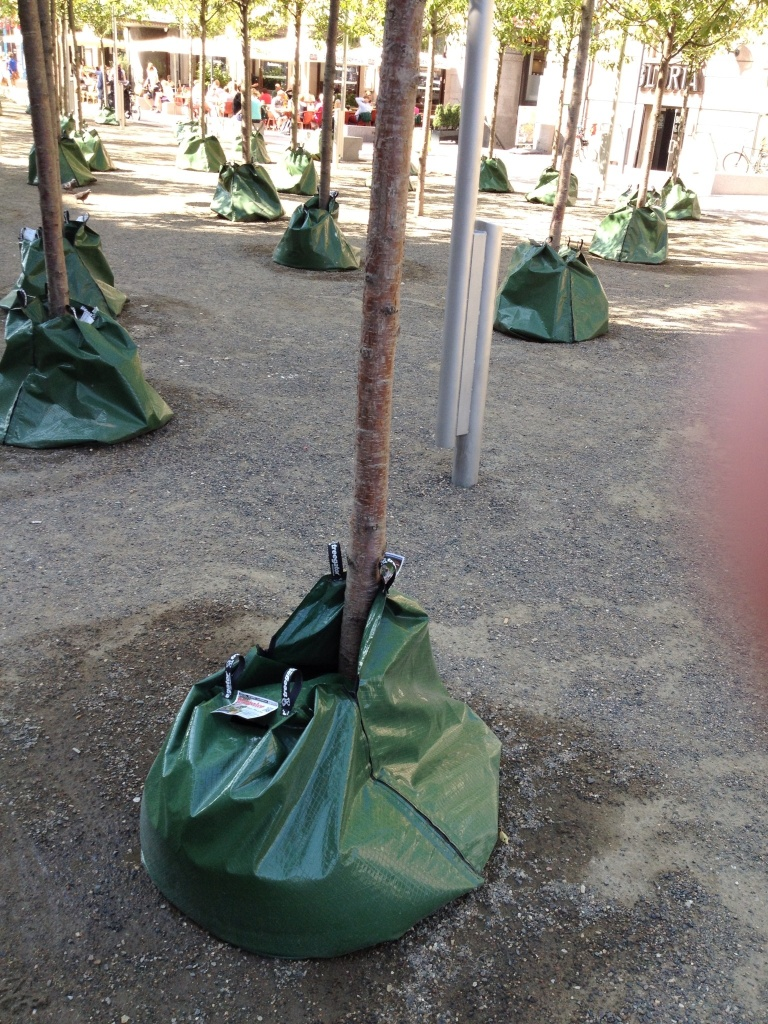Bag of water used to slowly water a tree. Easy to fill up, easy to use, and smart.