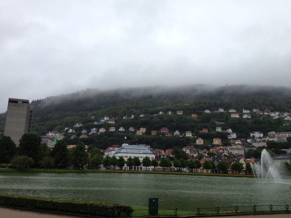 Hillside of Bergen.